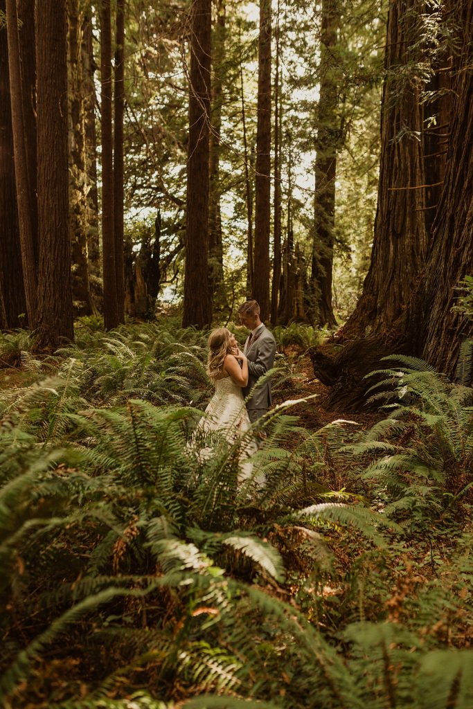 Redwood Forest Wedding Photographer